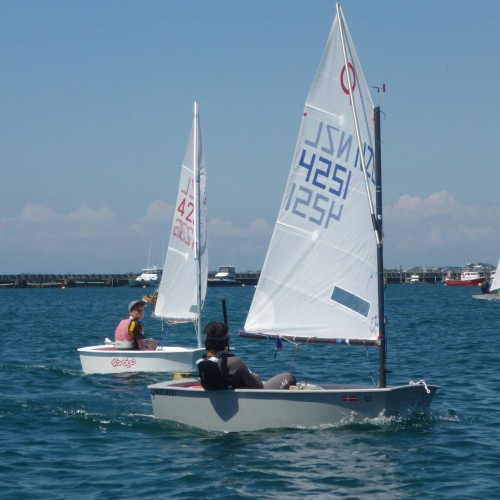 New Plymouth Yacht Club Classes Optimist